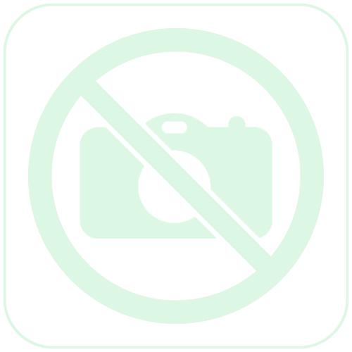 Gastro-M RVS spoeltafel met onderblad en achteropstand